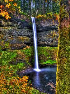 South Falls at Silver Falls State Park, Oregon, USA by Joe Restuccia III