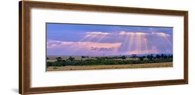 Sun Setting on the Masai Mara, Kenya