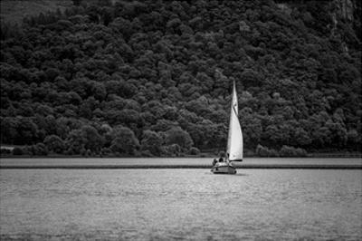 Sail by Joe Reynolds