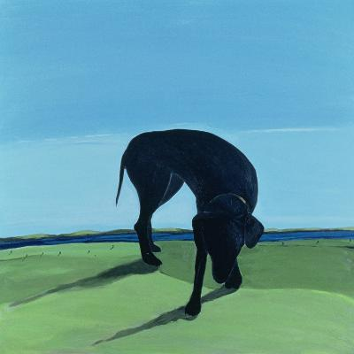 Joe's Black Dog, 1996-Marjorie Weiss-Giclee Print