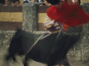 Panned View of a Bullfight by Joe Scherschel
