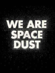 We Are Space Dust by Joe Van Wetering