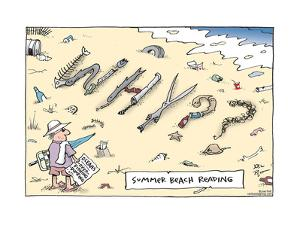 Summer beach reading. WHY?? by Joel Pett