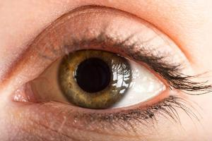 A Close Up of a Human Eye by Joel Sartore
