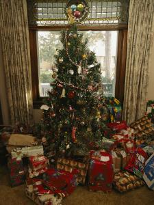A Decorated Christmas Tree with Wrapped Presents Beneath by Joel Sartore