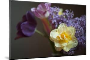 A Vase of Spring Flowers by Joel Sartore