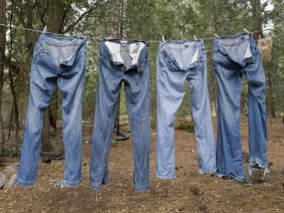 Blue Jeans Drying on a Clothes Line at King's Canyon National Park by Joel Sartore