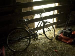 Old Bicycle Catches the Sunlight at the Fenton Farm near Greenleaf, Kansas by Joel Sartore