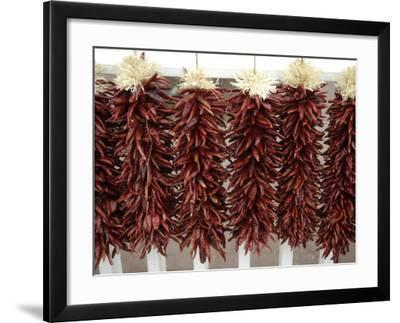 Red Peppers Hung Up to Dry, New Mexico