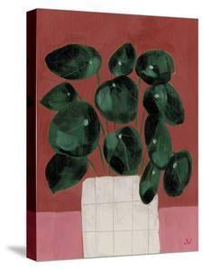 House Plants - Bloom by Joelle Wehkamp
