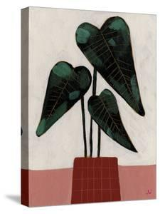 House Plants - Flourish by Joelle Wehkamp