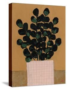 House Plants - Thrive by Joelle Wehkamp
