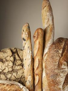 Assorted Loaves of Bread and Baguettes by Joerg Lehmann