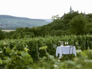 Table with Champagne Glasses in Vineyard in Champagne by Joerg Lehmann