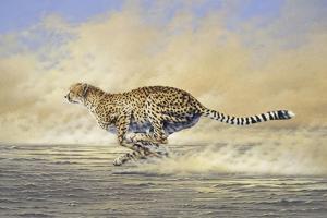Chasing by Joh Naito