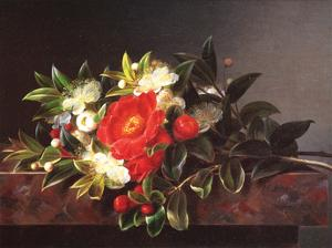 Camellia's Hypericum by Johan Laurentz Jensen
