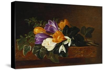 Crocii and Snowdrops on a Marble Ledge