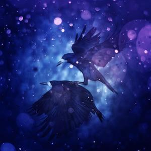 Bird Kingdom 3 by Johan Lilja