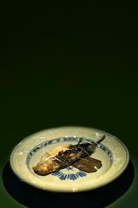 Bird Plate by Johan Lilja