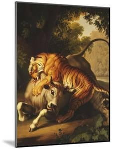 A Tiger Attacking a Bull, 1785 by Johan Wenzel Peter