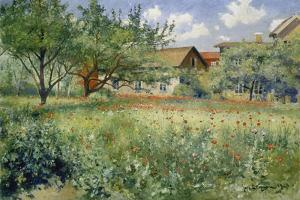 Poppy Field, 1923 by Johann Eric Ericson
