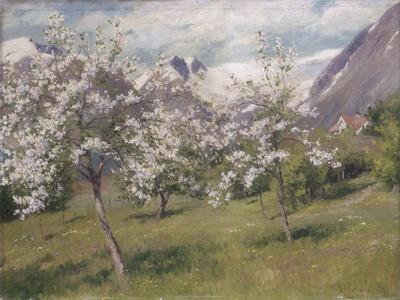 Norvège, verger en fleur (Harland) .1898