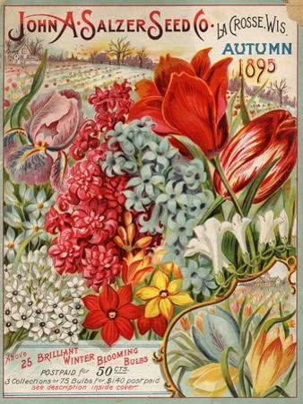 John A. Salzer Seed Co. Autumn 1895