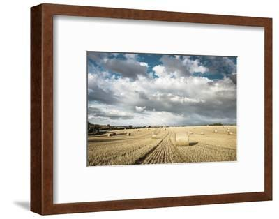 Baled Field, Gloucestershire, England, United Kingdom, Europe