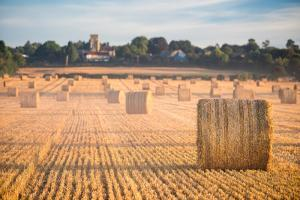 Hay bales in the Cuddesdon countryside, Oxfordshire, England, United Kingdom, Europe by John Alexander