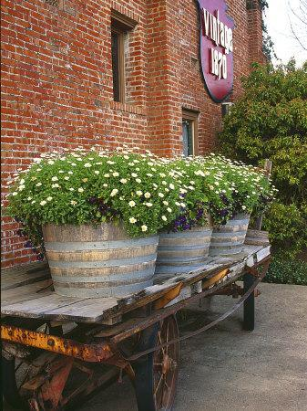 Flowers on Old Baggage Wagon, Vintage 1870 Shops, Napa Valley, California, USA