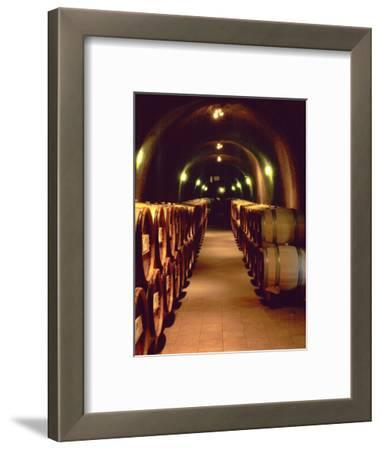 Wine Cave at the Pine Ridge Winery on the Silverado Trail, Napa Valley, California, USA
