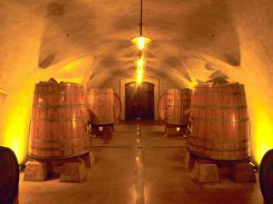 Wine Caves at the Viansa Winery, Sonoma County, California, USA by John Alves