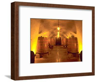Wine Caves at the Viansa Winery, Sonoma County, California, USA