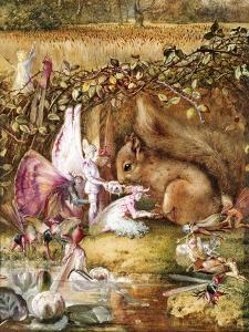 The Wounded Squirrel by John Anster Fitzgerald