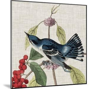 Avian Crop III by John Audubon