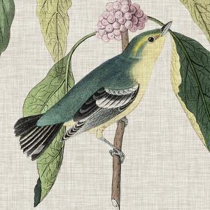 Avian Crop IV by John Audubon