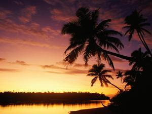 Coconut Palms Over Aitutaki Lagoon, Aitutaki, Southern Group, Cook Islands by John Banagan
