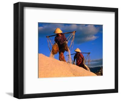 Female Labourers Carrying Sea Salt in Salt Fields of Doc Let Beach, Khanh Hoa, Vietnam