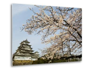 Himeji-Jo (Castle) and Blossoms