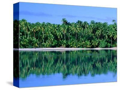 Palm Trees on Aitutaki Lagoon, Aitutaki, Southern Group, Cook Islands