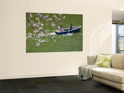Rowing Along Cherry Blossom-Lined Chidorigafuchi