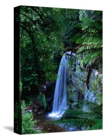 Russell Falls with Ferns in Foreground, Mt. Field National Park, Australia