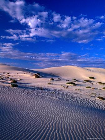 Sand Dunes Carved by Wind, Eucla National Park, Australia