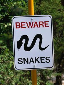 Snake Sign at Museum of Modern Art in Heidi, Melbourne, Australia by John Banagan