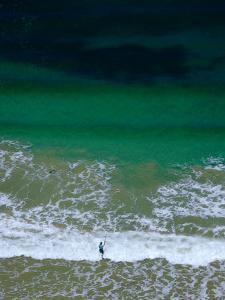 Surf Fisher, Torquay, Australia by John Banagan