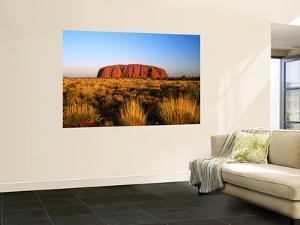 Uluru (Ayers Rock) with Desert Vegetation by John Banagan