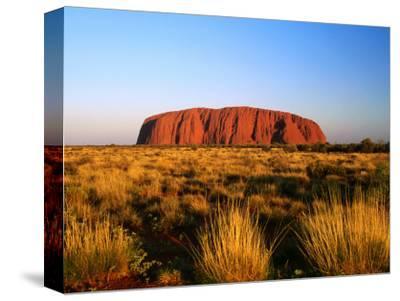 Uluru (Ayers Rock) with Desert Vegetation