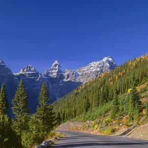 Alberta, Banff National Park, Wenkchemna Peaks and Autumn Colored Larch Above the Moraine Lake Road by John Barger