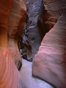 Arizona-Utah Border, Vermilion Cliffs National Monument by John Barger