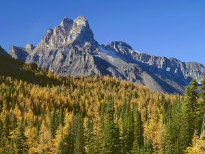 British Columbia, Yoho National Park by John Barger
